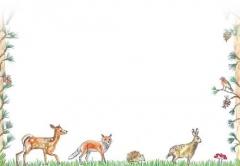 Briefumschläge C6 · Tiere im Wald · 20 Stück